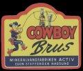 Cowboy Brus