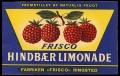 Hindb�r Limonade